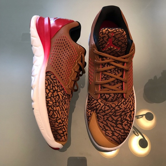 31f093b342365 Jordan Other - NWOT Nike Jordan lunarlon flight flex shoe